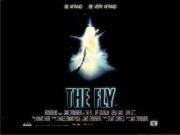 THE FLY movie quad poster
